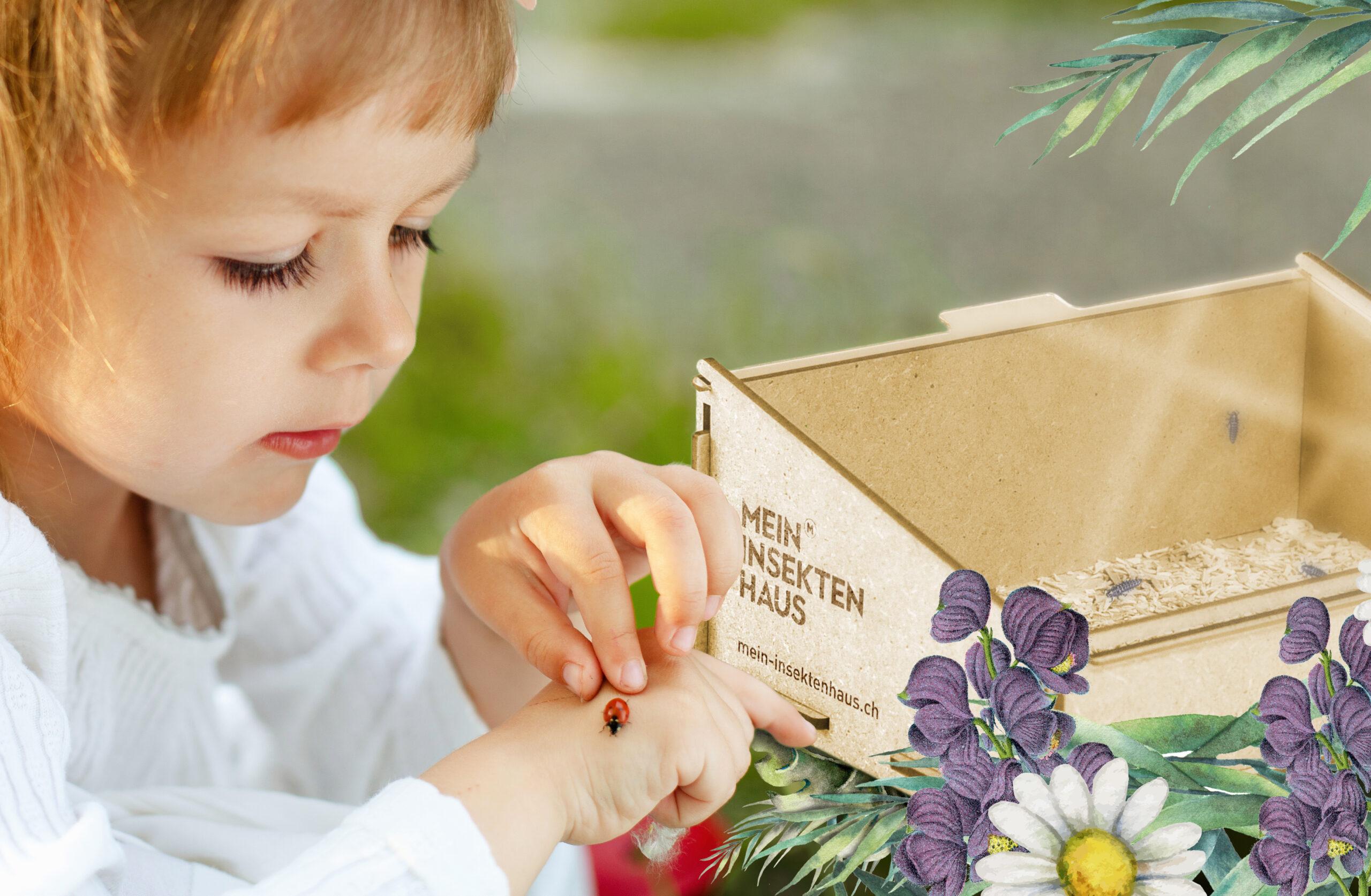 Kinder züchten Marienkäfer