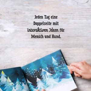 Anleitung Schnauzbert Adventskalender für Hunde